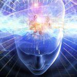 ¿Cómo hacer que nuestro cerebro un instrumento del éxito?